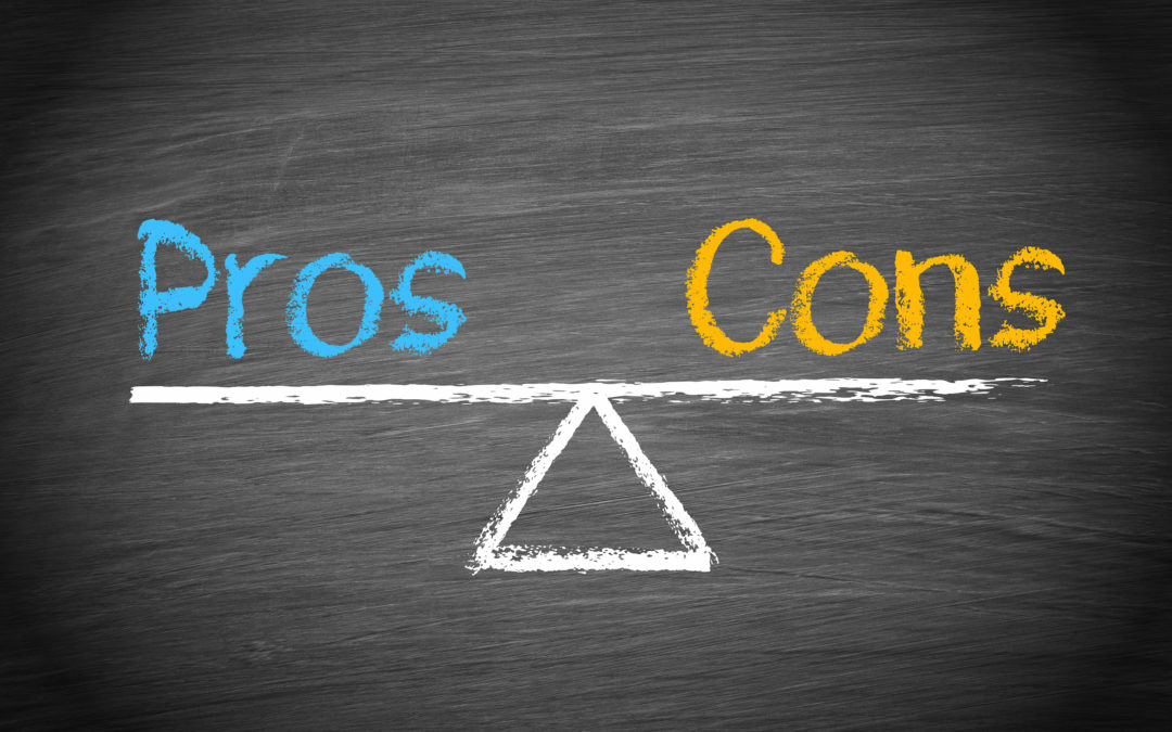 Pros and Cons of Fractional Sales Management